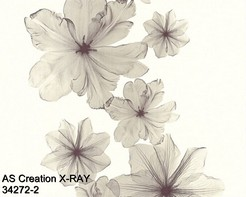 AS_Creations_X-RAY_34272-2_k.jpg