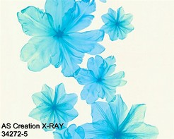 AS_Creations_X-RAY_34272-5_k.jpg