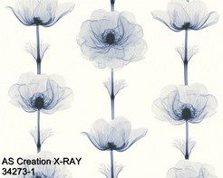 AS_Creations_X-RAY_34273-1_k.jpg
