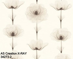 AS_Creations_X-RAY_34273-2_k.jpg