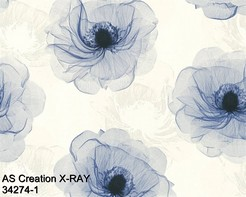 AS_Creations_X-RAY_34274-1_k.jpg