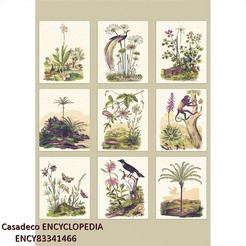 Casadeco-ENCYCLOPEDIA_ENCY83341466_k.jpg