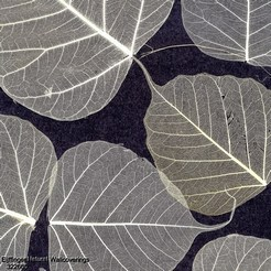 Eijffinger_Natural_Wallcoverings_322665_k.jpg