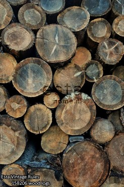 Esta_Vintage_Rules_158206 wood logs_k.jpg