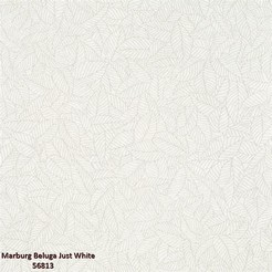 Marburg_Beluga_Just_White_56813_k.jpg