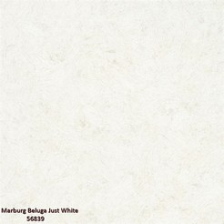 Marburg_Beluga_Just_White_56839_k.jpg