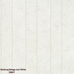 Marburg_Beluga_Just_White_56847_k.jpg
