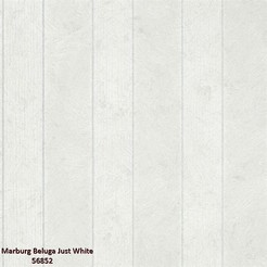 Marburg_Beluga_Just_White_56852_k.jpg